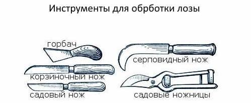 Инструмент для обработки лозы