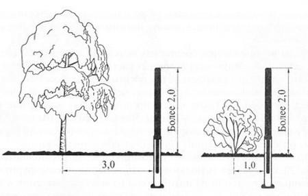 Расстояние посадки дерева от соседского забора